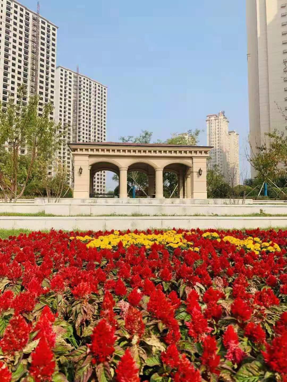 辽宁省鲅鱼圈,温泉房,海景房
